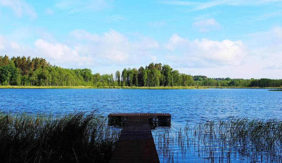 čistý rybník-