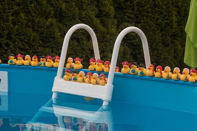 kačenky v bazénu.jpg