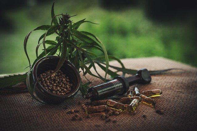 Semena a olejové kapsle